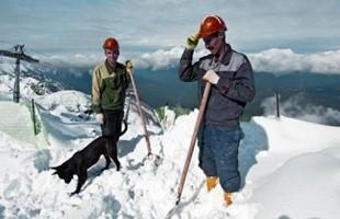 Trabajadores de Sochi 400 266 S C75