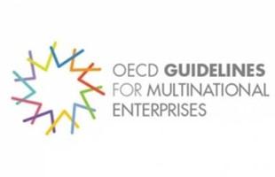 Principes directeurs de l'OCDE 400 266 S C75